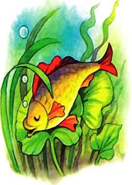 Рыбка спит. Рисунок