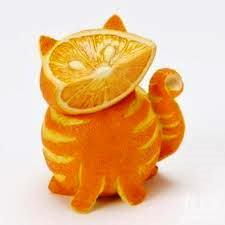 апельсин-кот